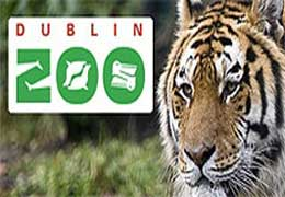 Dublin Zoo visits our school!